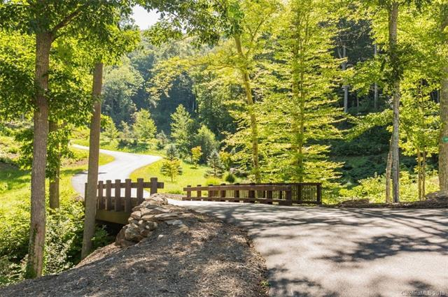 48 Bartrams Walk Drive #57, Asheville, NC 28804 (#3455456) :: Keller Williams Professionals