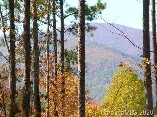 0 Loblolly Lane #14, Mill Spring, NC 28756 (#3456600) :: Puma & Associates Realty Inc.