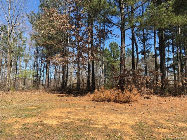 223 Winter Flake Drive, Statesville, NC 28677 (#3456925) :: Carlyle Properties