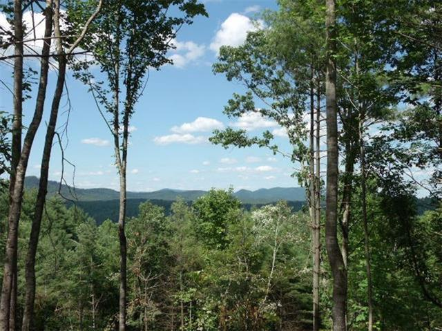Lot 304, 1198 Winding Creek Way, Lenoir, NC 28645 (#3458372) :: SearchCharlotte.com
