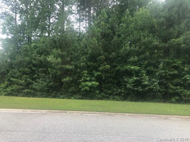 Lot 42 Cottonwood Drive - Photo 1
