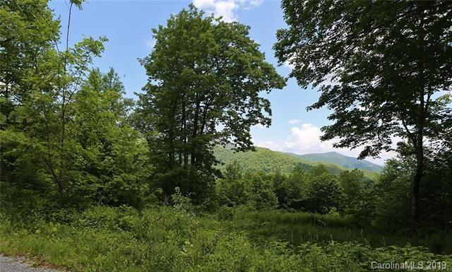 305 Bear Creek Road, Maggie Valley, NC 28751 (#3462693) :: Mossy Oak Properties Land and Luxury