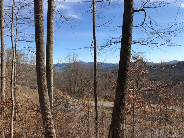 50 Clear Water Trail #520, Fairview, NC 28730 (#3468887) :: MECA Realty, LLC
