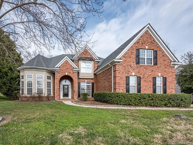 8206 Avanti Drive, Waxhaw, NC 28173 (#3471863) :: High Performance Real Estate Advisors