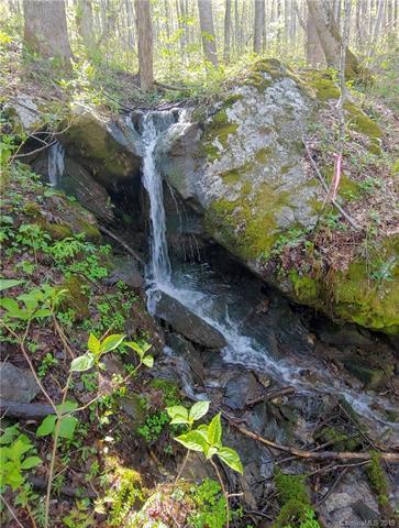 299 High Hickory Trail Trail #32, Swannanoa, NC 28805 (#3475846) :: Rinehart Realty