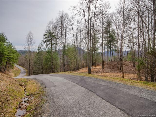 795 Wild River Run #21, Marshall, NC 28753 (#3478742) :: Exit Mountain Realty