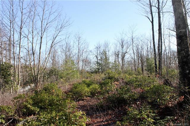 TBD Eastatoe Gap Road #29, Rosman, NC 28772 (#3479876) :: Carlyle Properties