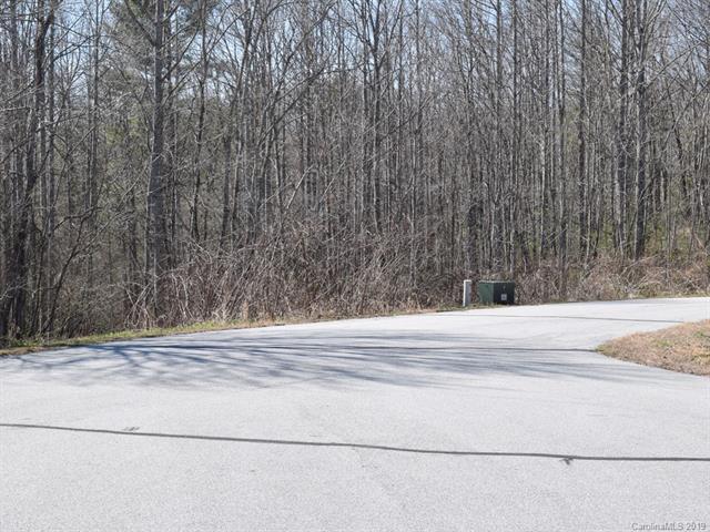 454 Morning Air Lane, Hendersonville, NC 28792 (#3481277) :: Zanthia Hastings Team