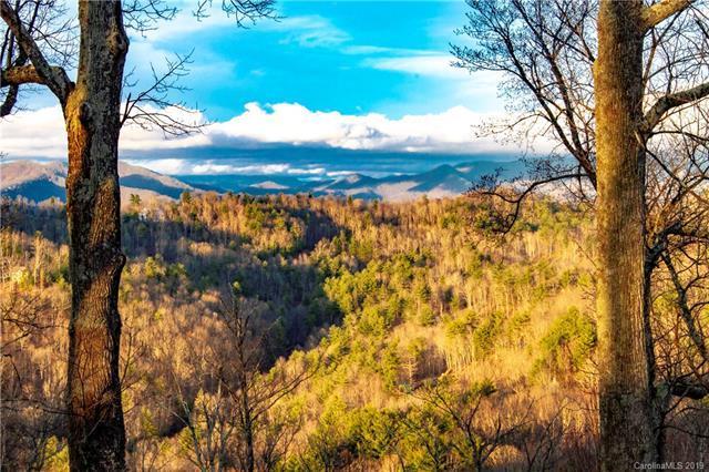 107 Summit Tower Circle #242, Asheville, NC 28804 (#3483542) :: Team Honeycutt