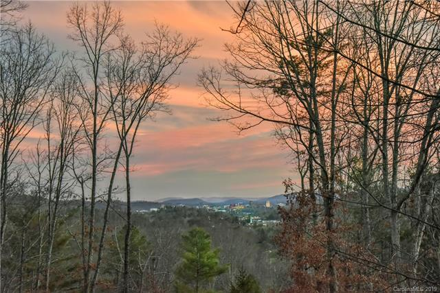 113 Robinhood Road, Asheville, NC 28804 (#3483794) :: LePage Johnson Realty Group, LLC