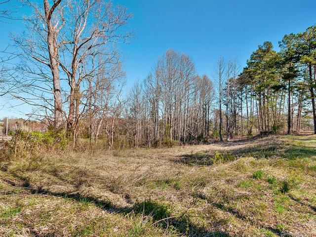 000 Henry Thompson Road, Tryon, NC 28782 (#3483828) :: Robert Greene Real Estate, Inc.