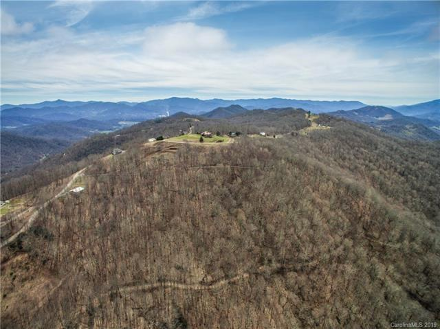 TBD Berry Patch Lane Lot's 15 & 16, Canton, NC 28716 (#3483971) :: LePage Johnson Realty Group, LLC