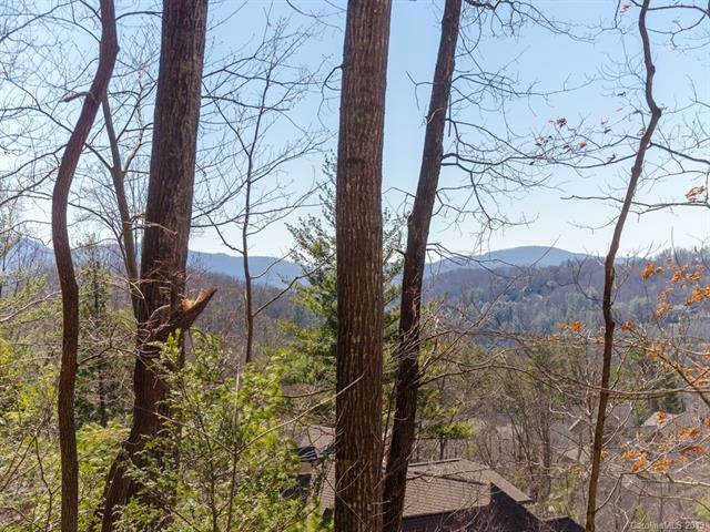 29 Red Tail Court #506, Fairview, NC 28730 (#3484747) :: Keller Williams Professionals