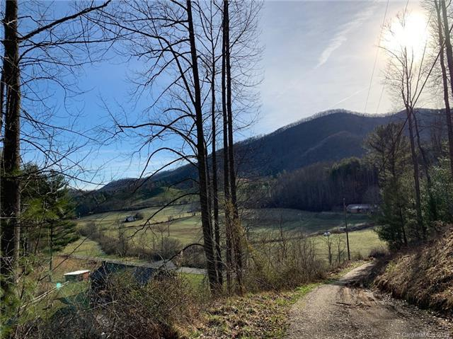 000 Barefoot Cove Road #13, Burnsville, NC 28761 (#3485143) :: Roby Realty