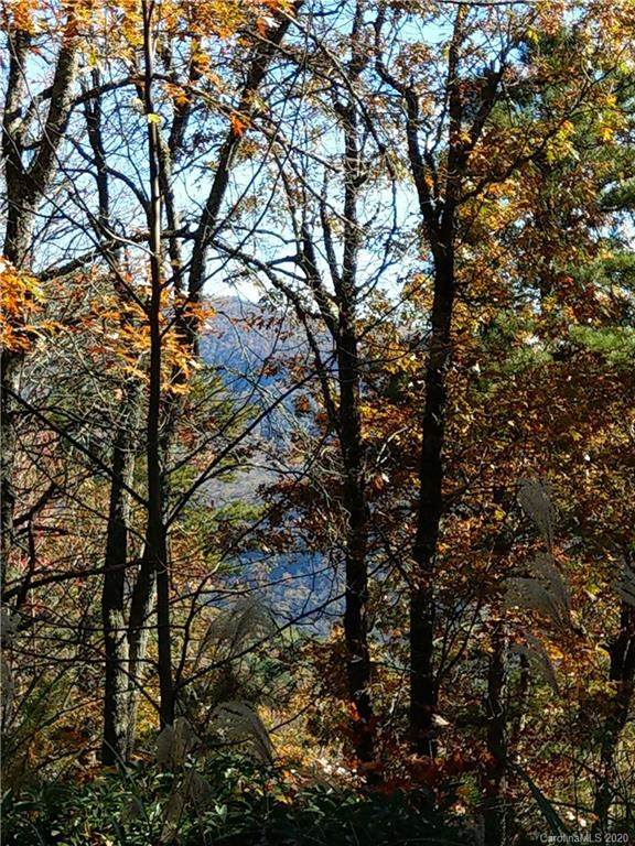 000 Emma Bri Lane F5, Hendersonville, NC 28739 (#3486647) :: Mossy Oak Properties Land and Luxury