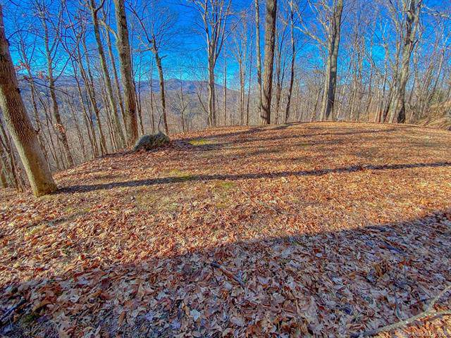 Lot 43 Weatherwatch Lane, Waynesville, NC 28786 (#3487402) :: Exit Realty Vistas