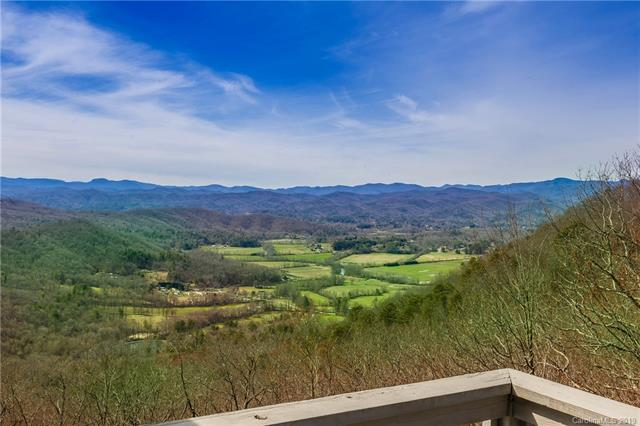 1241 Cantrell Mountain Road, Brevard, NC 28712 (#3488664) :: LePage Johnson Realty Group, LLC