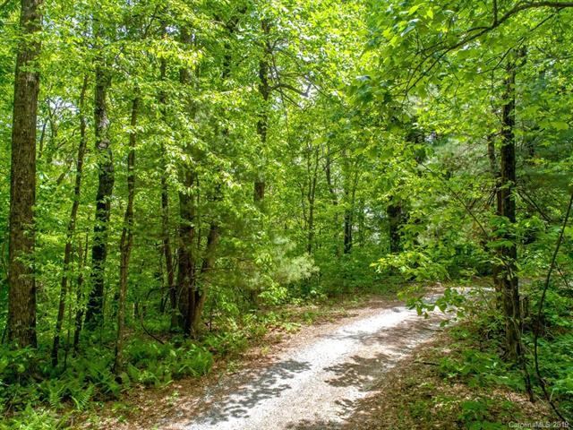 LOT 6 River Ridges Road, Hendersonville, NC 28739 (#3488711) :: Charlotte Home Experts