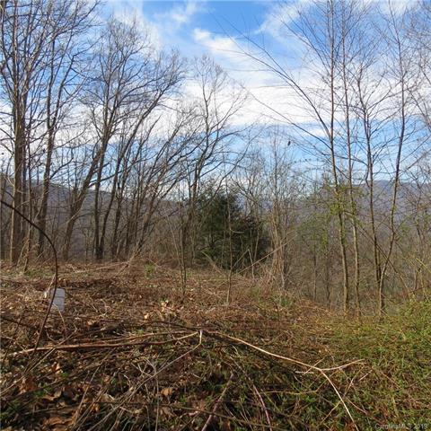 6 Cinnamon Ridge, Waynesville, NC 28785 (#3489947) :: Caulder Realty and Land Co.