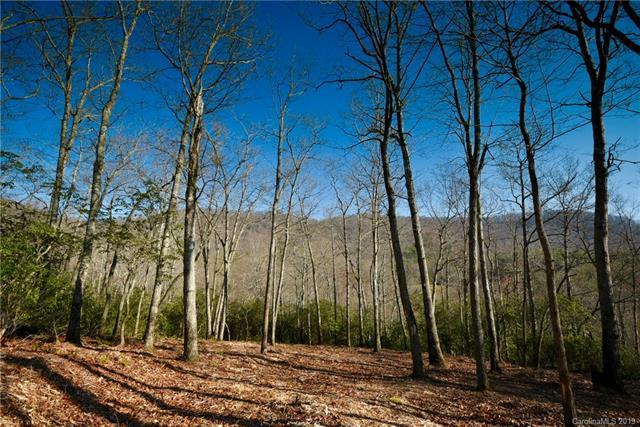 423 Walnut Valley Parkway #106, Arden, NC 28704 (#3491685) :: Cloninger Properties
