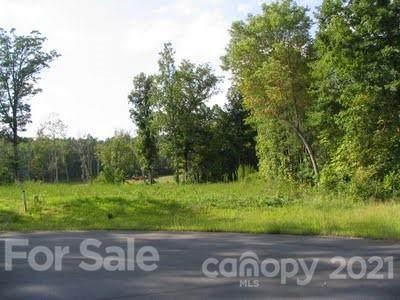 5468 Brownstone Drive, Mebane, NC 27302 (#3493656) :: High Vistas Realty