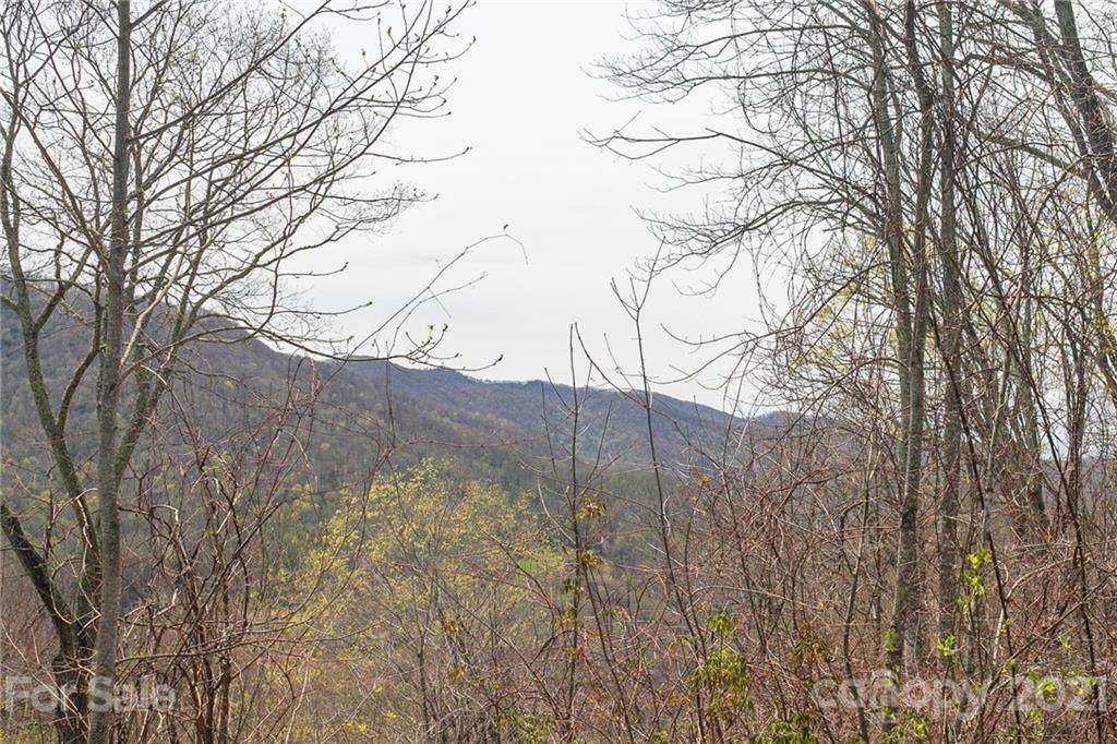 Lot 12 Austin Mountain Drive - Photo 1