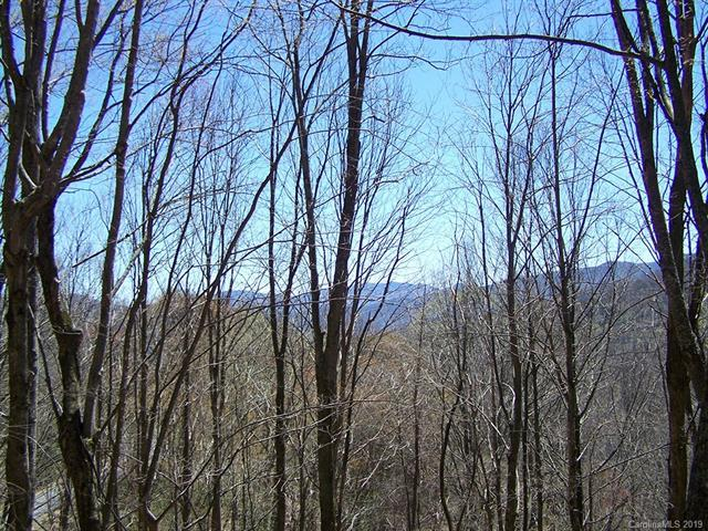 Lot 284 Running Deer Trail #284, Waynesville, NC 28786 (#3496149) :: Roby Realty