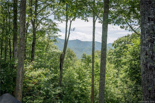 557 Catawaba Ridge, Maggie Valley, NC 28751 (#3496427) :: SearchCharlotte.com