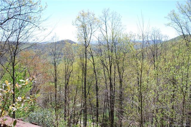 16 Elk Trail, Fairview, NC 28730 (#3497785) :: LePage Johnson Realty Group, LLC
