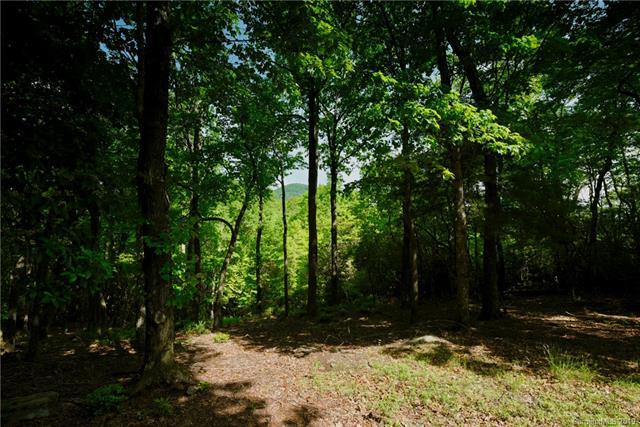 315 Stoneledge Trail Lot 17, Arden, NC 28704 (#3503874) :: Keller Williams South Park