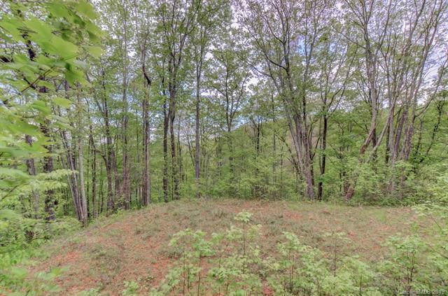 0 Running Bear Lane #36, Hot Springs, NC 28743 (#3506135) :: Keller Williams Professionals