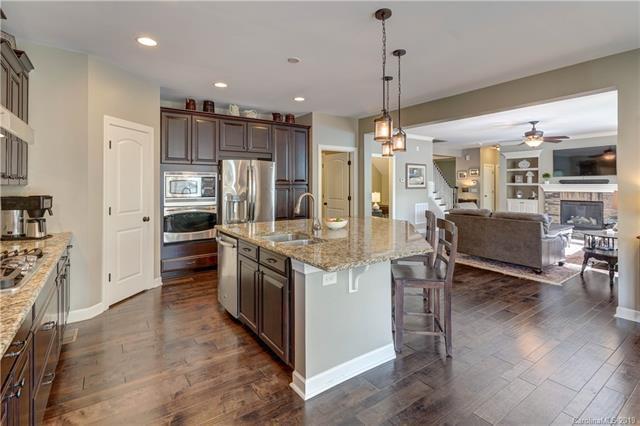 293 Walking Horse Trail, Davidson, NC 28036 (#3507956) :: High Performance Real Estate Advisors