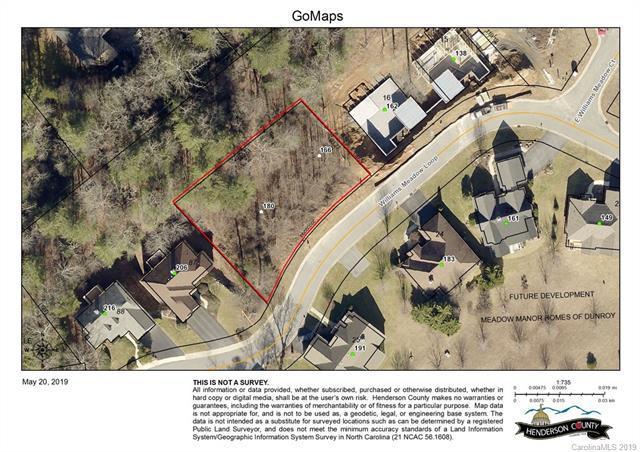 180 Williams Meadow Loop, Hendersonville, NC 28739 (#3508274) :: SearchCharlotte.com