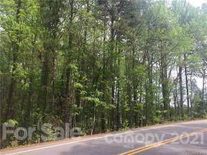 11024 Caroline Acres Road, Indian Land, SC 29707 (#3510691) :: Premier Realty NC