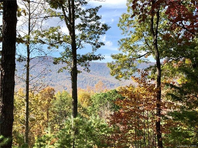 1604 Country View Way Lot 162, Arden, NC 28704 (#3512853) :: LePage Johnson Realty Group, LLC