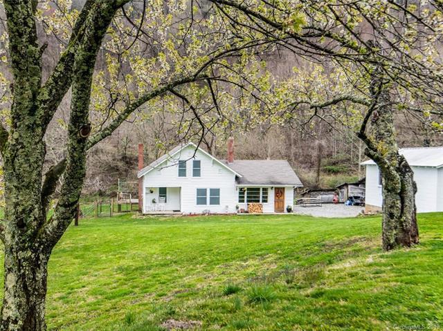 1078 N Turkey Creek Road, Leicester, NC 28748 (#3515102) :: Carlyle Properties