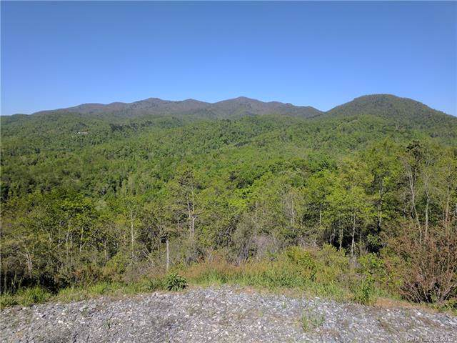 259 & 263 Winding Ridge Road #1 And #2, Black Mountain, NC 28711 (#3517210) :: Carlyle Properties