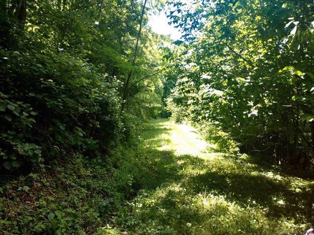 Lot 31 Sallywood Trail, Waynesville, NC 28785 (#3518107) :: Carlyle Properties
