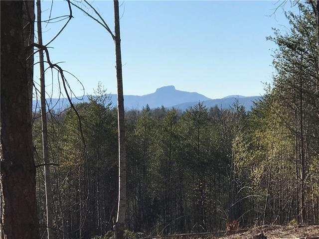Lot 913 High Valley Way #913, Lenoir, NC 28645 (#3518507) :: Besecker Homes Team
