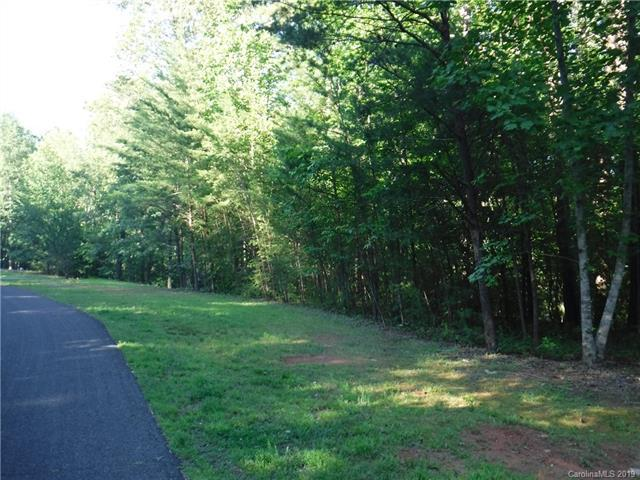 Lot 10 South Pointe Road, Mill Spring, NC 28756 (#3520504) :: Francis Real Estate