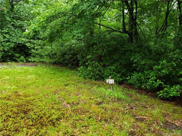 NA Galax Lane H-201, Brevard, NC 28712 (#3520885) :: Carlyle Properties