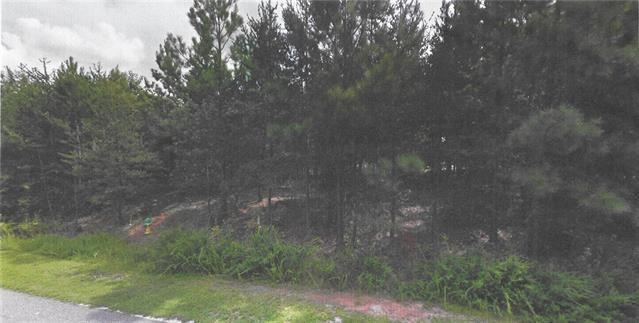 141 Priscilla Drive, Connelly Springs, NC 28612 (#3522309) :: Rinehart Realty