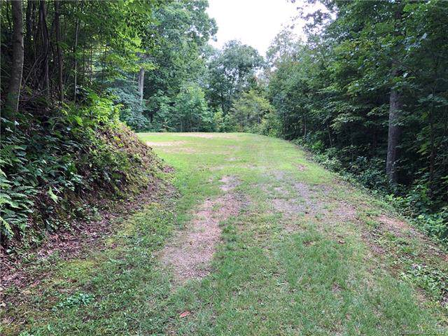 105 Pats Lane #105, Clyde, NC 28721 (#3525635) :: Roby Realty