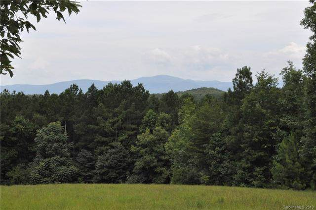 0 Polk County Line Road #6, Rutherfordton, NC 28139 (#3527615) :: Caulder Realty and Land Co.