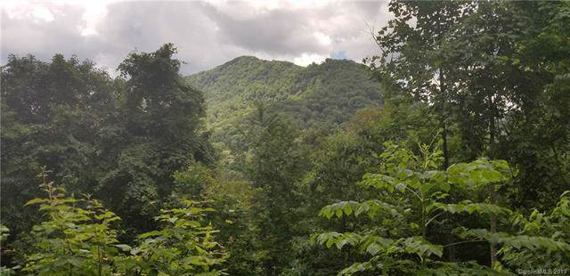 188 Antler Springs Way, Maggie Valley, NC 28751 (#3529685) :: Homes Charlotte