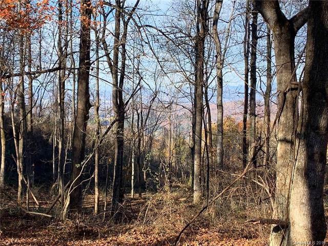 000 Laurel Park Highway N #117, Laurel Park, NC 28739 (#3530734) :: LePage Johnson Realty Group, LLC