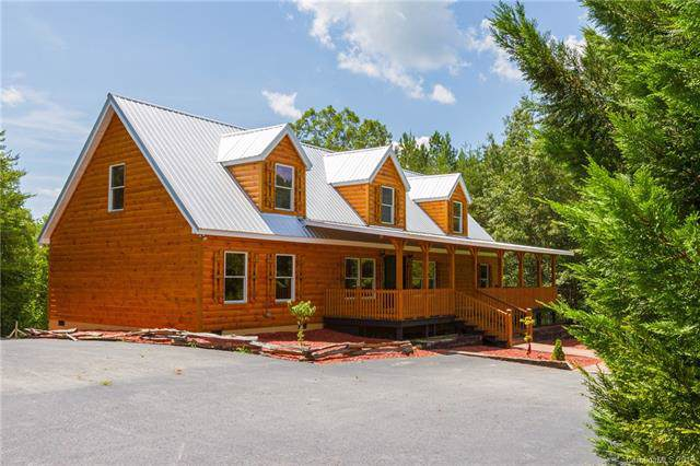 218 Stanley Lane, Mill Spring, NC 28756 (#3530879) :: Keller Williams Professionals