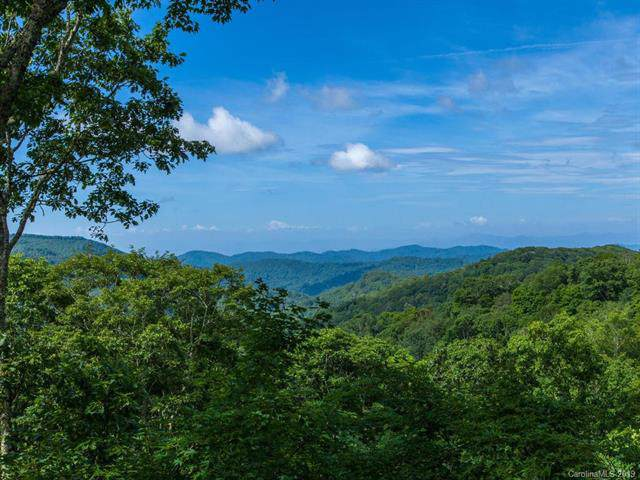 65 Mountainside Lane #2, Mars Hill, NC 28754 (#3530891) :: Roby Realty