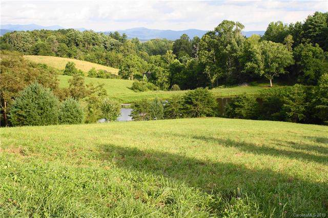 30 Enchanted Oak Lane, Alexander, NC 28701 (#3531793) :: LePage Johnson Realty Group, LLC