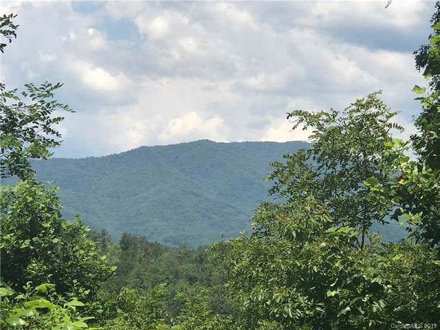 Lot 2 Fiddlers Mountain Road #2, Whittier, NC 28789 (#3534825) :: Caulder Realty and Land Co.